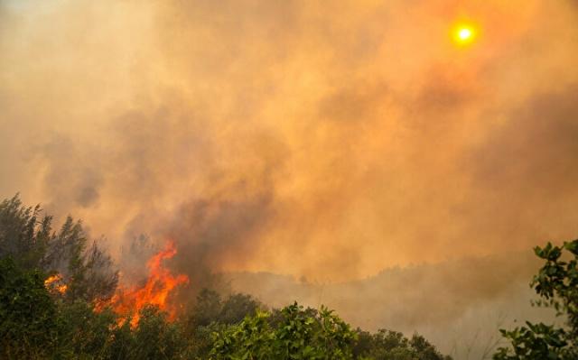 Antalya'nın Manavgat ilçesinde devam eden yangında, Kalemler Mahallesi'nde yanan evini görmeye gelen bir kadın, içeride hala yanan ve dumanı tüten evinin durumunu telefonla bir tanıdığına anlatırken gözyaşlarına boğuldu