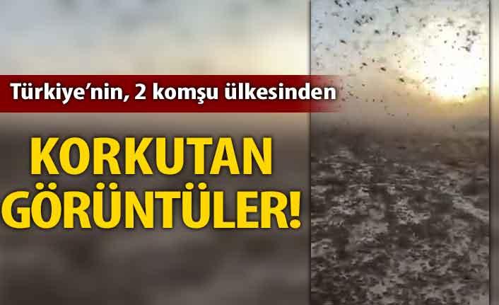 Türkiye'nin 2 sınır komşularından korkutan görüntüler! İstila ettiler...