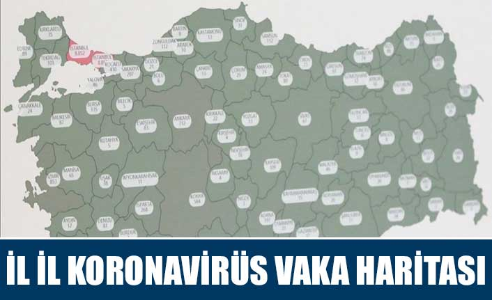 İl il koronavirüs vaka haritası