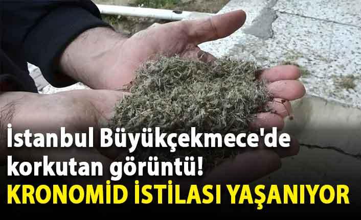 İstanbul Büyükçekmece'de korkutan görüntü!