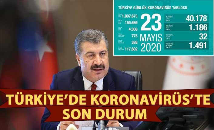 Türkiye'de Kovid-19'dan iyileşen hasta sayısı 117 bin 602'ye ulaştı