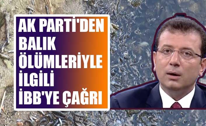 AK Parti'den balık ölümleriyle ilgili İBB'ye çağrı