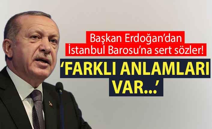 Cumhurbaşkanı Erdoğan barolara 'Ebru Timtik' tepkisi