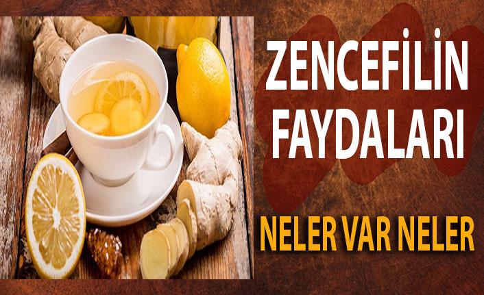 Kilo vermek ve bağışıklığınızı güçlendirmek için zencefil çayı için