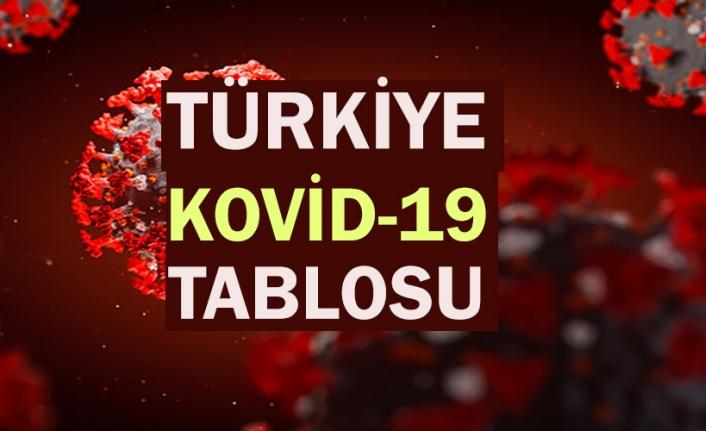 Türkiye'de son 24 saatte 29 bin 718 kişinin Kovid-19 testi pozitif çıktı, 240 kişi hayatını kaybetti