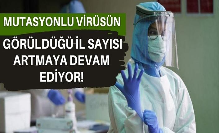 Mutasyonlu virüsün görüldüğü il sayısı 23'e yükseldi