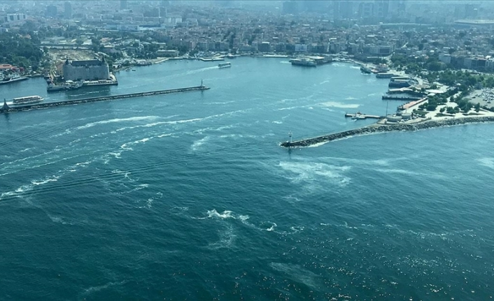 Marmara'nın müsilaj sorununa çözüm : Burslu yetiştirilecek