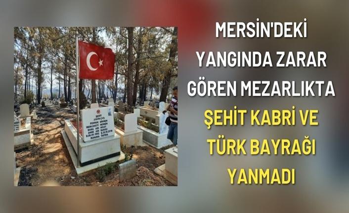 Yangında zarar gören mezarlıkta şehit kabri ve Türk bayrağı yanmadı