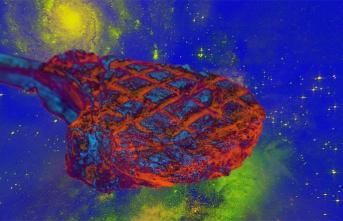 Bilim İnsanları, Uzayda İlk Defa Et Üretmeyi Başardı