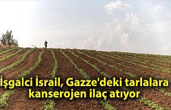 İşgalci İsrail, Gazze'deki tarlalara kanserojen ilaç atıyor