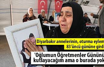 Diyarbakır annelerinden Ödümlü: Oğlumun Öğretmenler Gününü kutlayacağım ama o burada yok