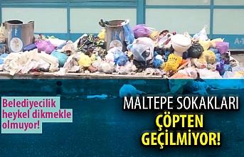 Maltepe sokaklarında çöp sorunu devam ediyor!