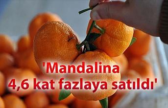 'Mandalina 4,6 kat fazlaya satıldı'