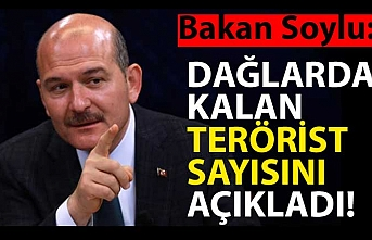 Bakan Soylu dağlarda kalan terörist sayısını açıkladı