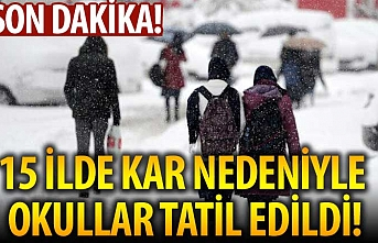 Yarın 15 ilimizde kar nedeniyle okullar tatil edildi
