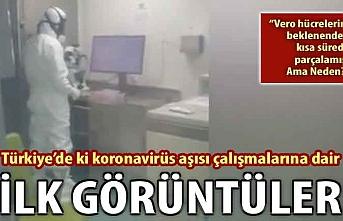 Türkiye'deki koronavirüs aşısı çalışmalarına dair ilk görüntüler