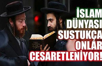 İslam dünyası sustukça onlar cesaretleniyor!