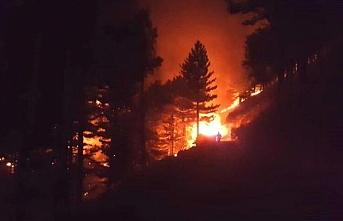 Adana'da orman yangını! 200 hektar alan yandı, 6 köy boşaltıldı!