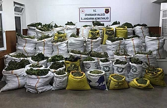 Diyarbakır'da 669 kilo esrar, 510 bin kök kenevir ele geçirildi