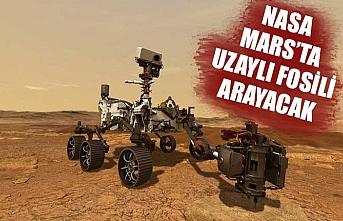 NASA'nın Perseverance aracı Mars'ta uzaylı fosili arayacak