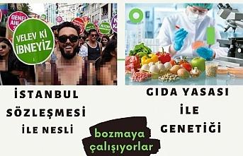 İstanbul Sözleşmesi'nden kurtulduk derken, şimdi de Gıda yasası çıktı!
