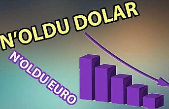 Merkez Bankası'nın faiz kararından sonra euro ve dolarda gerileme