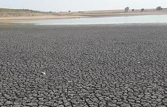 Edirne'de son 91 yılın en kurak dönemi yaşanıyor! Kayalıköy Barajı'ndaki su seviyesi yüzde 3'e indi