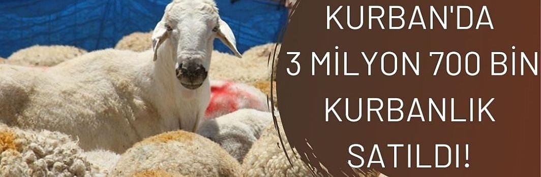 Bayramda 3 milyon 700 bin kurbanlık satıldı