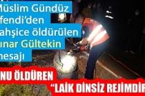 Müslim Gündüz Efendi'den vahşice öldürülen Pınar Gültekin mesajı