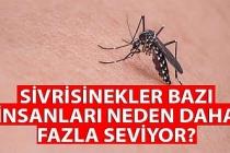 Sivrisinekler neden bazı insanları daha fazla seviyor?