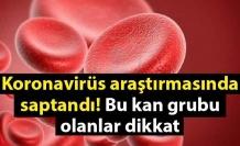 Koronavirüs araştırmasında saptandı! Bu kan grubu olanlar dikkat