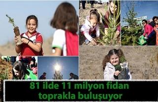 81 ilde 11 milyon fidan toprakla buluşuyor