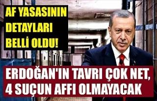Af yasasının detayları belli oldu! Erdoğan'ın...