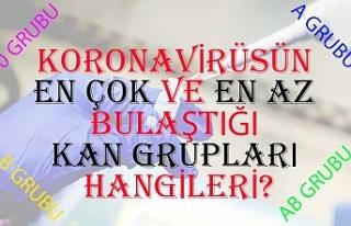 Koronavirüsün en çok ve en az bulaştığı kan...