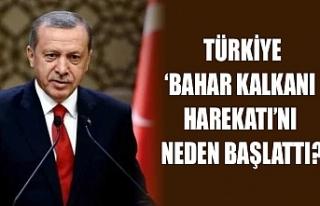 Türkiye 'Bahar Kalkanı Harekatı'nı neden başlattı?