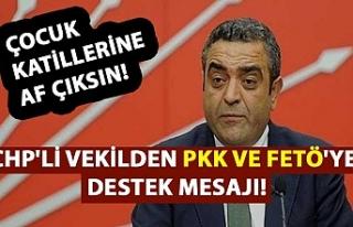 CHP'li vekilden PKK ve FETÖ'ye destek mesajı!
