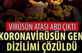 Koronavirüsün gen dizilimi çözüldü: Virüsün...