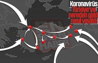 Koronavirüsün Türkiye'de nasıl yayıldığı...