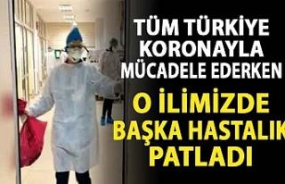 Tüm Türkiye koronayla mücadele ederken o ilimizde...