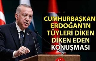 Cumhurbaşkanı Erdoğan'ın tüyleri diken diken...