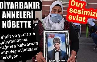 Diyarbakır annelerinden Panay: Emrah oradan kaç...