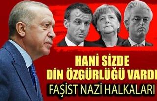 Cumhurbaşkanı Erdoğan: Siz Nazi'nin zincir...