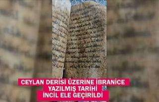 Gaziantep'te ceylan derisi üzerine İbranice...