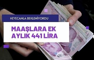 Memur ve emeklinin aile yardımı 441 liraya yükselecek
