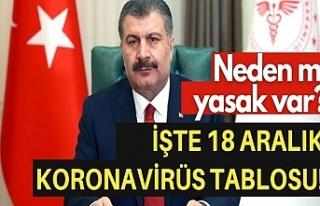 18 Aralık Türkiye'de koronavirüs raporu