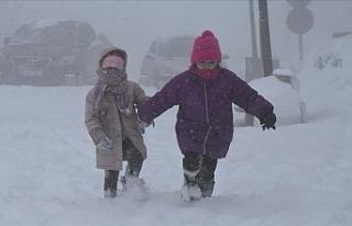 Kar yağışı nedeniyle bazı illerde eğitime ara...