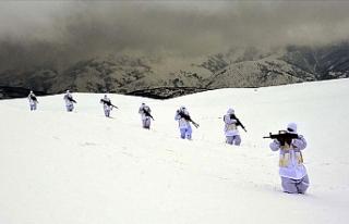 Muş'ta jandarma ekipleri, teröristlere dondurucu...