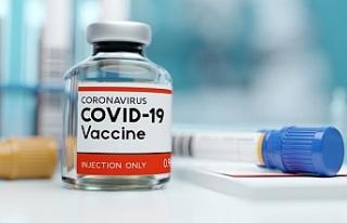 AstraZeneca koronavirüs aşısının kullanımını...