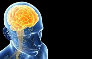 Beynimizin %10'unu Kullandığımız Efsanesi...