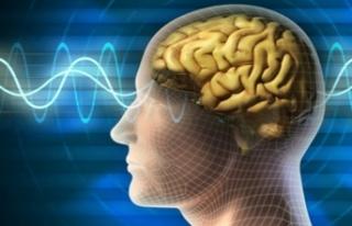 İnsan beyni, ilk kez kablosuz bir şekilde bilgisayara...